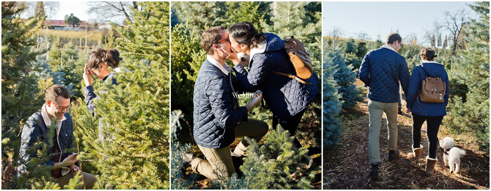 Julia_Croteau_Photography_Best_Engagement_Placerville_Photographer_WEB